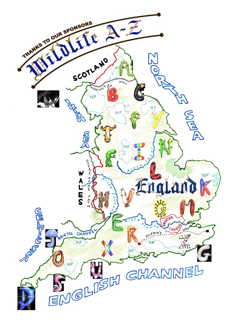 A Z Map Of England.Wildlife A Z Www Wildengland Com